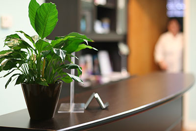 welcome_officeplant
